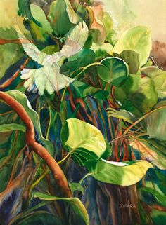 """Original watercolor painting titled """"Into the Light"""" of a dove flying into the thick jungle found here on the North Shore of Maui Original Art For Sale, Original Artwork, Dove Flying, Hawaiian Art, Bird Artwork, Hand Art, Flower Art, Art Flowers, Tropical Plants"""