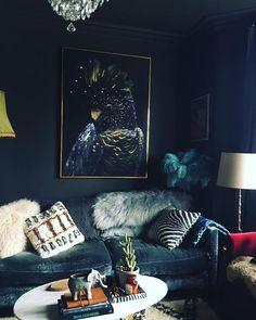 Dark and moody dark navy blue living room
