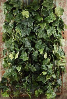 Backdrop Silk Ivy Green Wall 32 x 18 $28 Mountable
