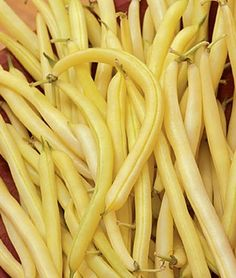 Bush Bean 'Cherokee Wax. This Golden Wax heirloom bean is a heavy producer, 55 days until harvest