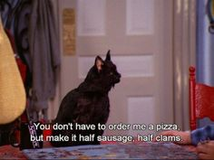 <b>Salem Saberhagen explains it all.</b>