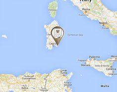 Cucciolo di golden retriever smarrito nei pressi di #Cagliari. Fate girare!
