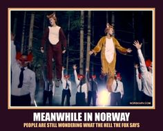 Meanwhile in Norway meme. What does the fox say? From Norskarv.com.