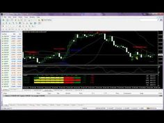 Best trading the indicators forex for what for beginners are