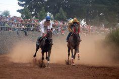 http://regioncanarias-diariodigital.blogspot.com/2014/06/grandes-carreras-de-caballos-este.html