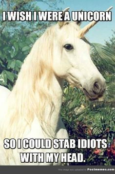If Only I Could Be A Unicorn