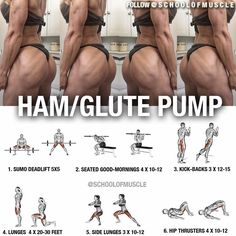 """1,021 Likes, 17 Comments - School Of Muscle (@schoolofmuscle) on Instagram: """"✅ Hammie and Glute Workout!  . . . And Men, It's Your Duty To Tag That Booty . Tag your gf or…"""""""