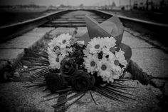 My sister and I went on a tour of Auschwitz & Birkenau. Auschwitz & Birkenau were concentration camps opened during World War 2 to house & exterminate Jews Wieliczka Salt Mine, Krakow, Day Tours, Beautiful Pictures, Flowers, Image, Pretty Pictures, Royal Icing Flowers, Flower