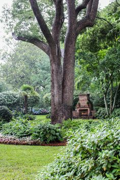 A Classic Charleston Garden Focused on Shrubs and Trees Gardens