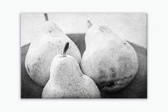 Ready-to-hang wrapped canvas print of three rustic pears, large rustic kitchen fruit print on canvas, sizes 5x7 to 30x40. Title: Autumn Harvest Canvas prints are professionally-stretched onto a 1.25""