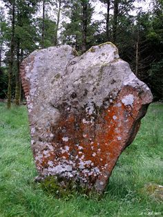 Ireland In Ruins: Knickeen Ogham Stone Co Wicklow