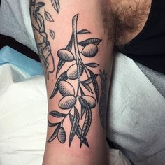 Olive branch | @ christianlanouette on Instagram Olive Branch Tattoo, Puppy Tattoo, Under My Skin, Tattoo Ideas, Christian, Inspirational, Tattoos, Drawings, Instagram Posts