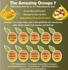 is a rare fatty acid in the epithelial cell membranes skin blood vessels and mucous membranes. The Amazing Omega 7 has many benefits including regulating fat and blood sugar metabolism (shows promise for diabetes) reducing LDL Cholesterol re Stop Acid Reflux, Cholesterol Diet, Reduce Cholesterol, Cholesterol Levels, Fatty Liver, Healing Herbs, Wound Healing, Health Remedies, Natural Health