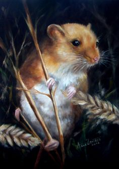 mouseannezoutsos.jpeg 349×495 pixels GUIDE MOUSE - SCRUTINY 'I will touch everything with my whiskers in order to know it.'