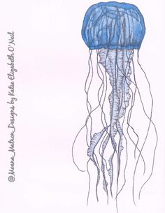 Jellyfish drawing done with blue copic markers and a sakura micron pen tip. Tentacles and shading detail done entirely in dots / pointillism / stippling. Copic Marker Drawings, Copic Markers, Pencil Drawings, Octopus Outline, Biology Drawing, Jellyfish Drawing, Pointillism, Copics, Tentacle