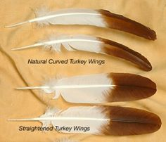 Turkey feathers are naturally curved. To make them look like Eagle feathers it is necessary to flatten the feather quill without damaging the feather blade. In our example here we will use commercially dyed white turkey wing feathers. Feather Painting, Feather Art, Feather Jewelry, Feather Pens, Feather Earrings, Native American Crafts, Native American Beadwork, American Indians, Native Beadwork