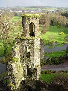 Co Cork:  Blarney Castle view