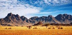 PAISAJE sabana africana - Buscar con Google