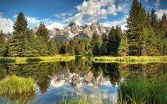 grand tetons national park, wyoming, горы, деревья, пейзаж