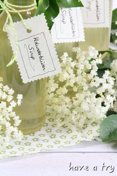 Elderflower syrup (homemade) - Elderflower syrup in small bottles as a gift - Healthy Eating Tips, Healthy Life, Healthy Living, Vodka, Drink Tags, Cocktail Photography, Tumblr Food, Liqueur, Cooking Chef