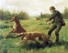 Beautiful old greyhound coursing art