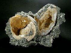 Calcite from Rucks' Pit Okeechobee County, Florida, USA Florida Georgia, Florida Usa, Rock Tumbling, Rock Collection, Fossils, The Neighbourhood, Rocks, Shell, Crystals