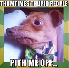 Don't pith me Off!