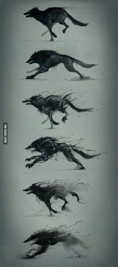 Cool Art Transformation - wolf