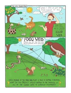Food Web Comic with Doodle Comic Science Comics, Science Fun, Food Webs, Education Middle School, Reluctant Readers, Visual Learning, Flower Backgrounds, Classroom Activities, Students