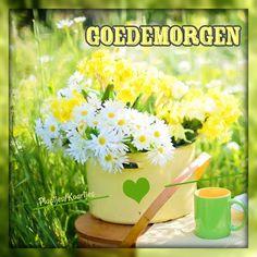 Good Morning Prayer, Morning Prayers, Herbs, Plants, Herb, Plant, Planets, Medicinal Plants
