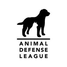 Jamie Stolarski, Animal Defense League
