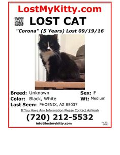 http://www.lostmykitty.com/pet_images/pdf/faxing/29583.pdf