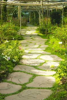 A stone pathway in public flower garden. This lengthly stone path is the star of the show here. These stones are uniform in design, yet still varied and unique in shape.