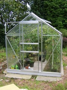how+to+grow+tomatoes+in+a+greenhouse | ... _1221056529Growing_Tomatoes_in_a_Greenhouse.JPG