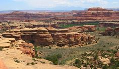The Needles District in Canyonlands National Park, Utah.  The La Salle mountains are in the background.