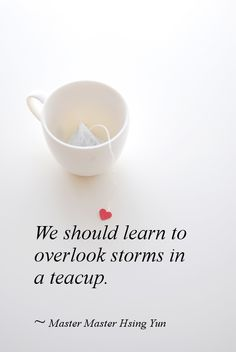 We should learn to overlook storms in a teacup.  ~ Master Master Hsing Yun