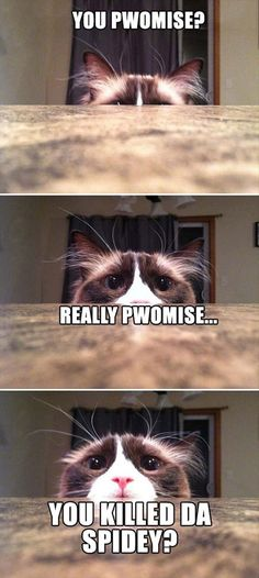 Funny Pictures – 81 Pics