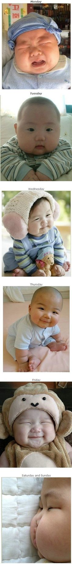 Babies....so cute Chubby Babies, Asian Babies, Babies R,