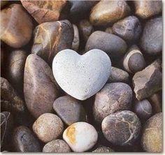 Finding heart shaped rocks-Oakley just found one this week. Heart In Nature, Heart Art, I Love Heart, Happy Heart, Humble Heart, Heart Shaped Rocks, Heart Pictures, Heart Pics, Beautiful Pictures