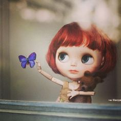 .@Jodie McGuire | #blythe #blythedoll Butterfly collector! | Webstagram - the best Instagram viewer