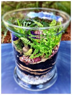 Make a Terrarium Tabletop Garden. It's easy with these instructions. #lowescreativeideas