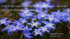 그러나 귀신들이 너희에게 항복하는 것으로 기뻐하지 말고 너희 이름이 하늘에 기록된 것으로 기뻐하라 하시니라  아멘충성교회 이인강 목사  http://amencs.com 고양시 덕양구 교회 아멘충성교회 담임 이인강 목사 전화 : 031-969-3884 믿음,행함,순종,시험통과,의의복음