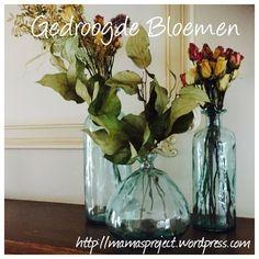 Zowat elke vrouw krijgt graag bloemen. Vooral als ze onverwachts komen. Een bosje bloemen fleurt een kamer echt op. Een tafel met een bloemetje heeft altijd iets feestelijks.En je kan zo de seizoe...