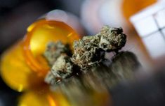 SC: Former U.S. Attorney Calls For Referendum On Medical Marijuana