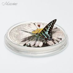2015 EXOTIC BUTTERFLIES: GRAPHIUM POLICENES Equat. Guinea 1000 Fr. Silver Coin
