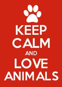 keep calm and love animals 3 Keep Calm Posters, Keep Calm Quotes, Dog Quotes, Life Quotes, Funny Quotes, Sport Quotes, Keep Calm Signs, Keep Calm Funny, Keep Calm Wallpaper