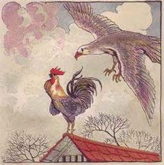 Hahn und Adler