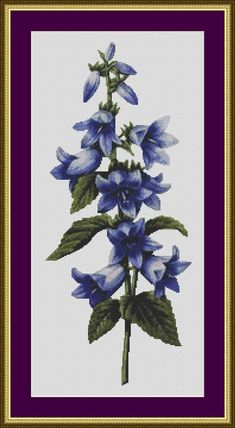 Nettle-leaved Bellflower - Counted Cross Stitch Pattern on Etsy, $4.39 AUD