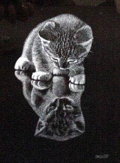 Kitten on mirror, scratchboard print by Rudy Droguett
