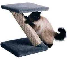 Z Scratcher : Color SPECKLED SAND : Size SISAL Z SCRATCHER * Check this useful article by going to the link at the image.